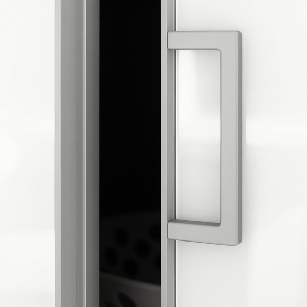 Chicago Glass Raumplus Dual Sided Door Systems